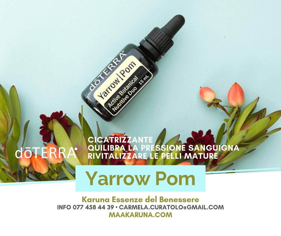 YarrowPom doTerra